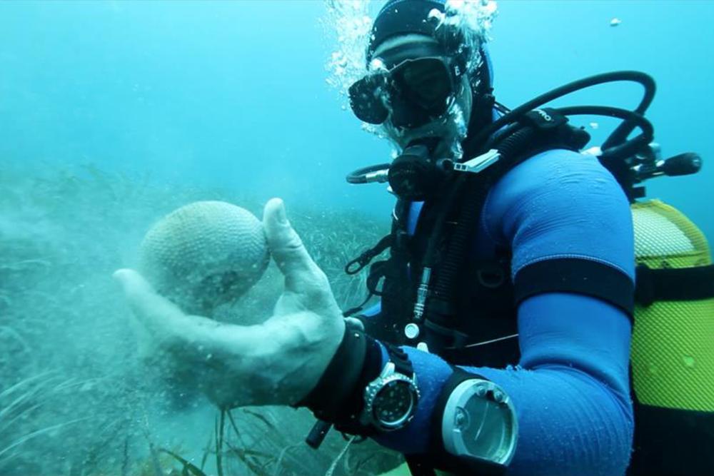 Dive Mediteranean.png
