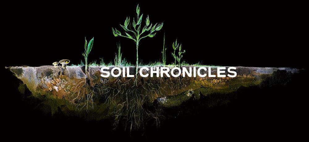 soil title.jpg