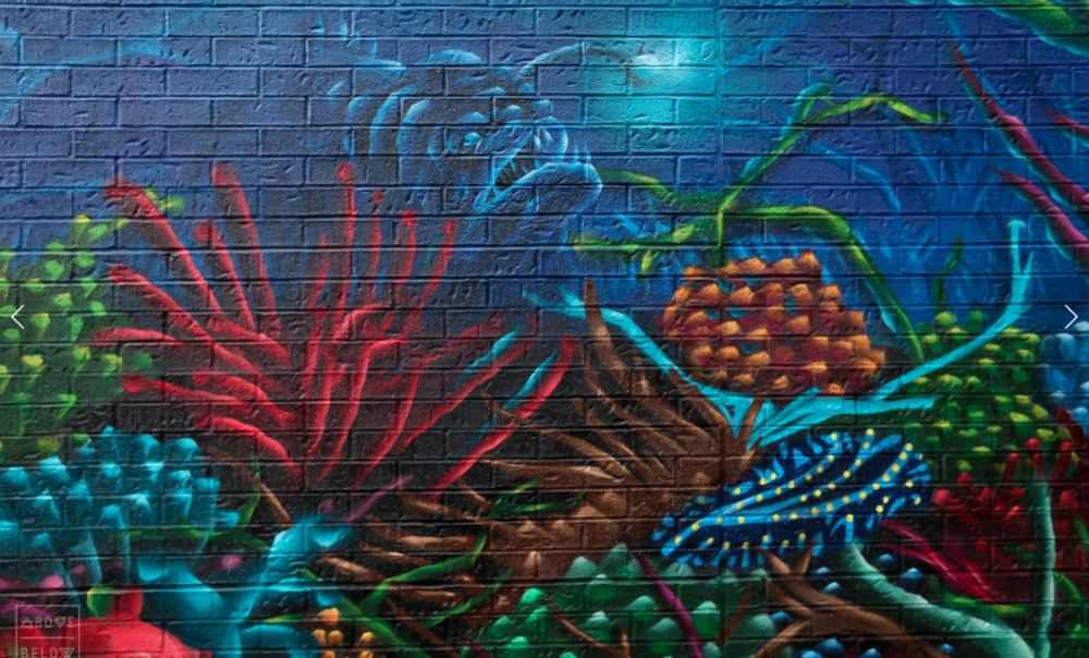 Mural by - Birdo and Gesto /Toronto, Ontario , Canada