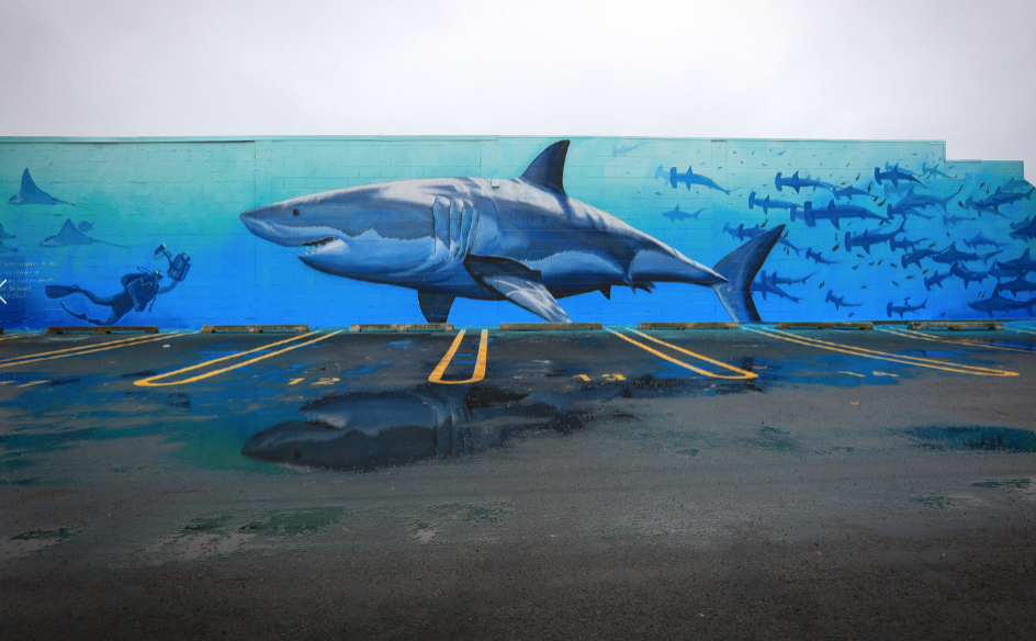 Mural by - Freedman White , New Zealand.