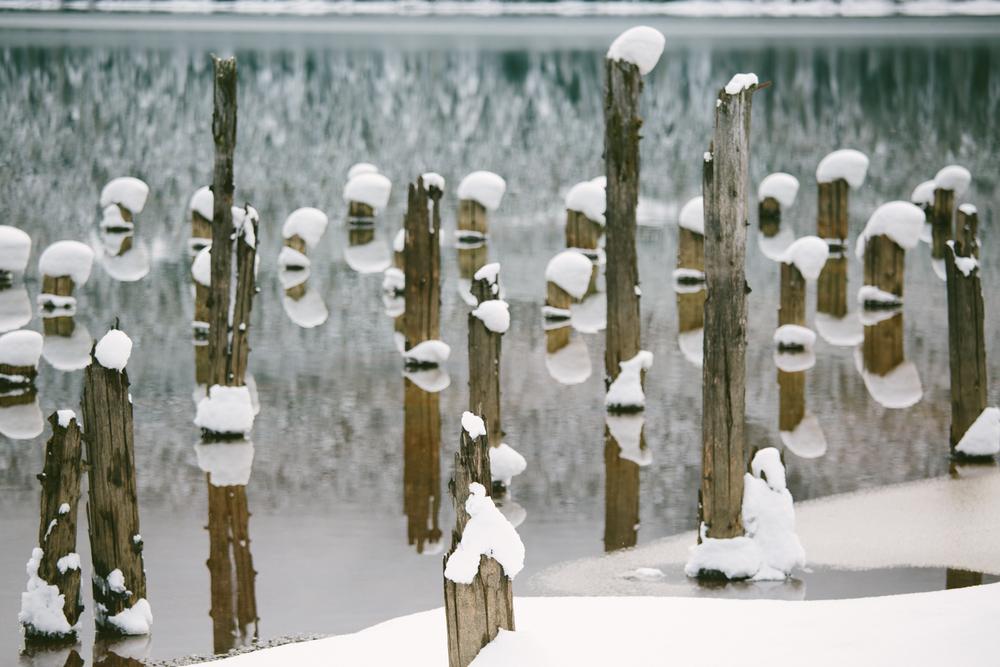 winter-7344.jpg