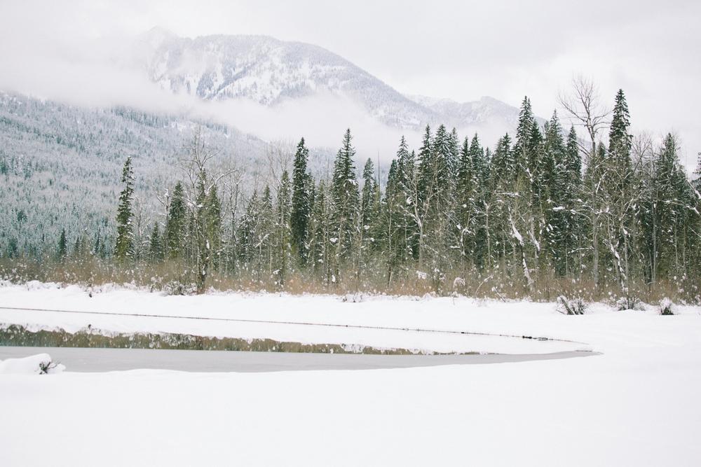 winter-7366.jpg