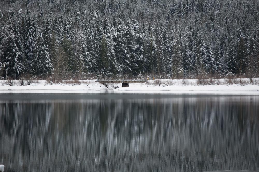 winter-7373.jpg