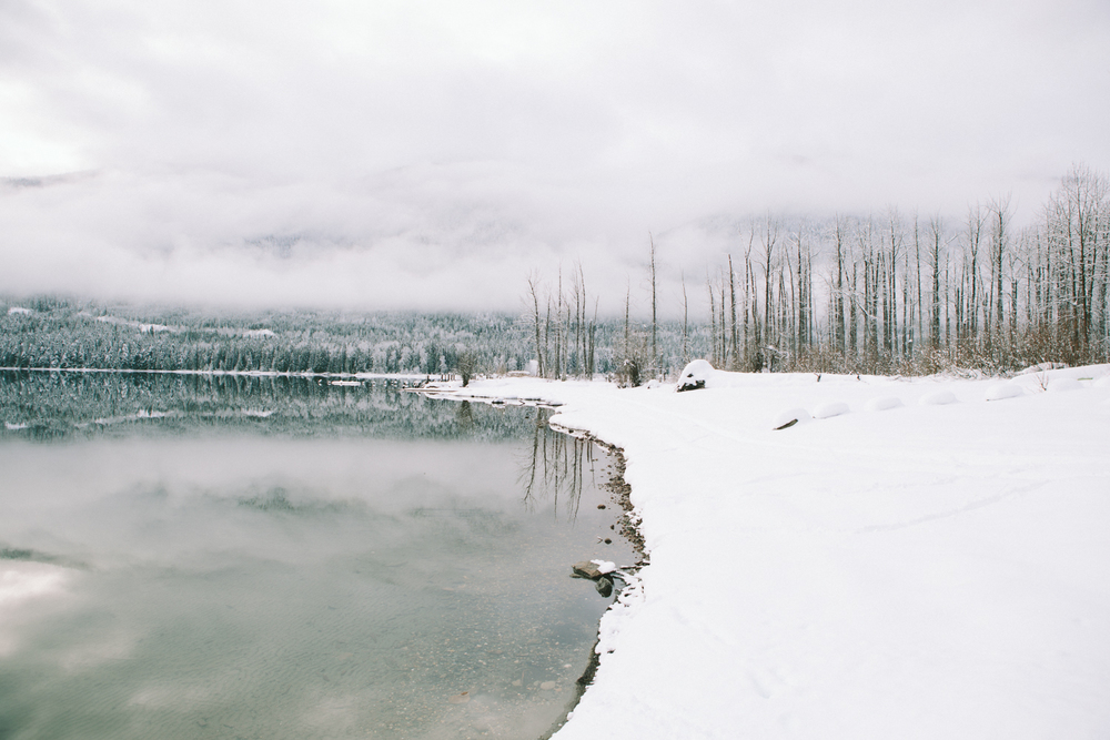 winter-7380.jpg