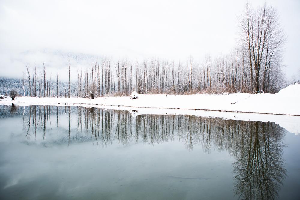 winter-7384.jpg