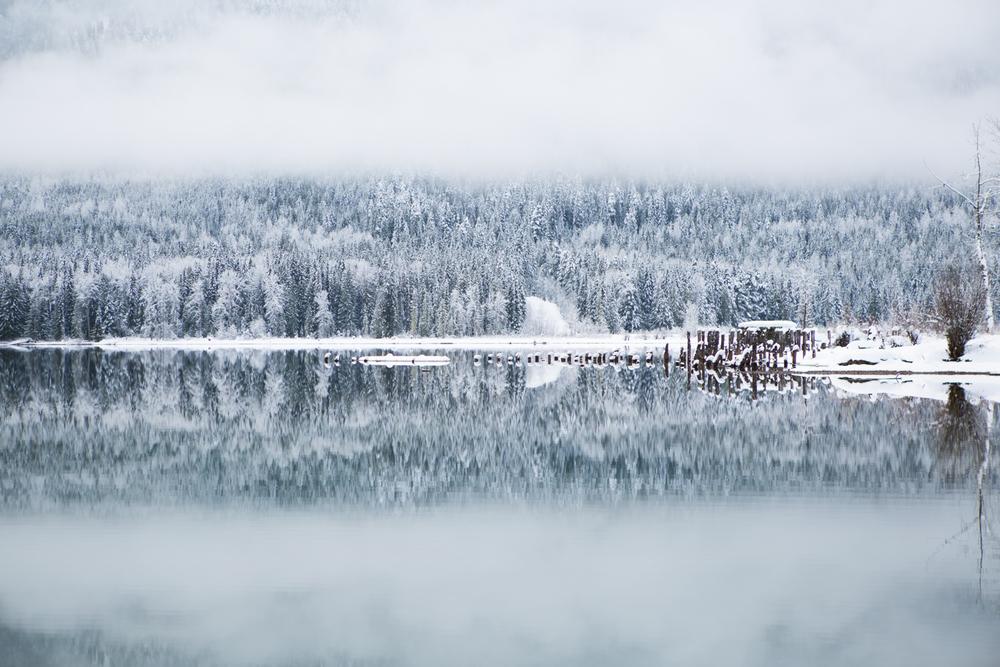 winter-7388.jpg