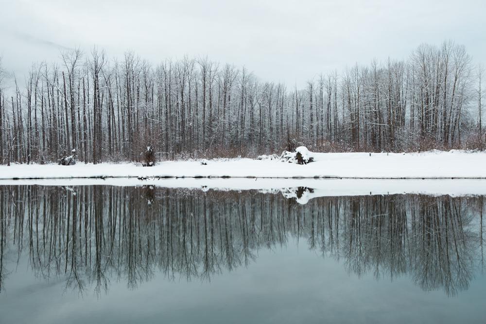 winter-7400.jpg