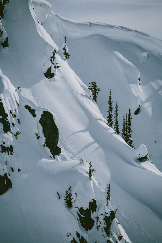 winter-9200.jpg