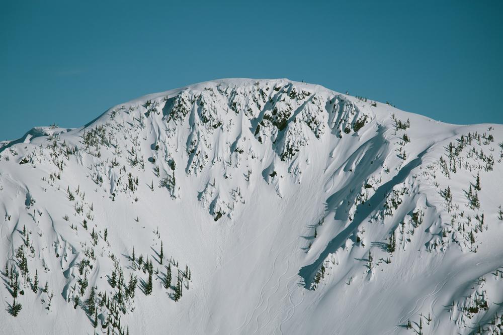 winter-9246.jpg