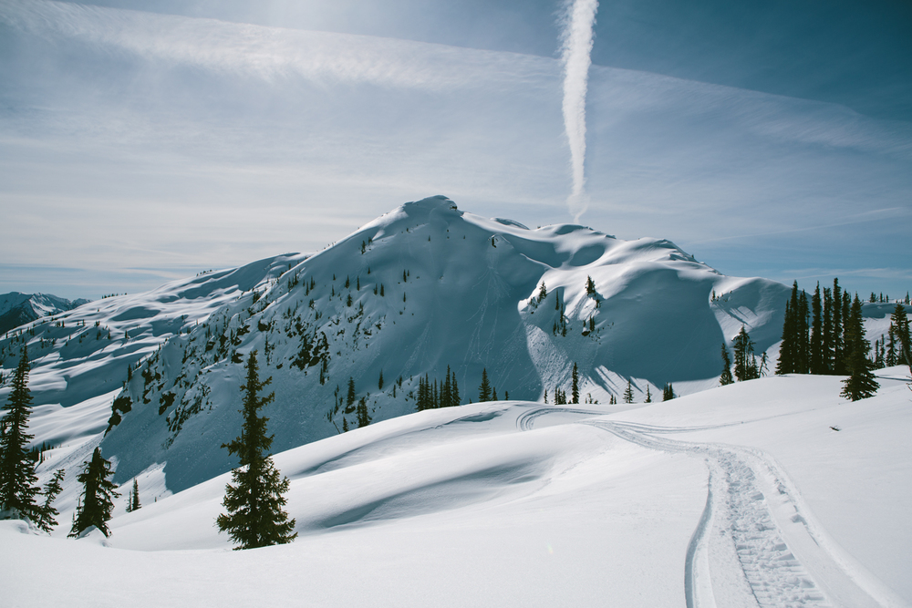 winter-9361.jpg