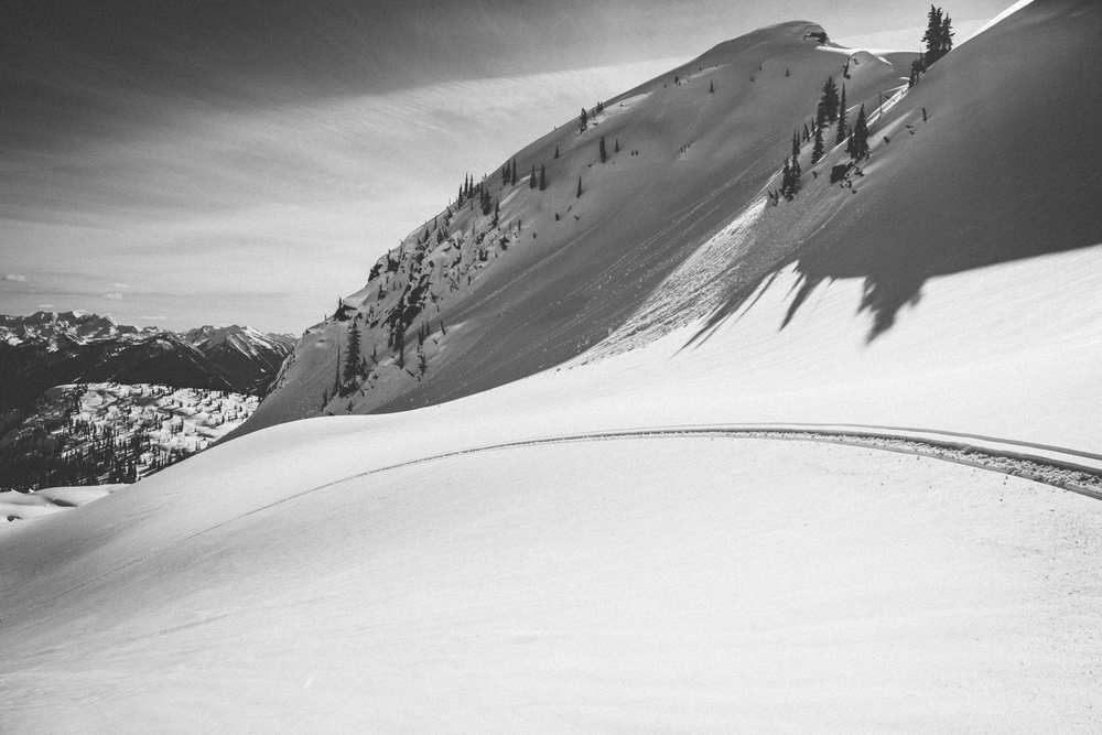 winter-9366.jpg