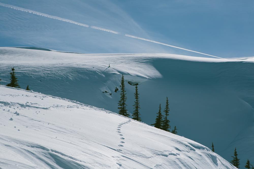 winter-9387.jpg