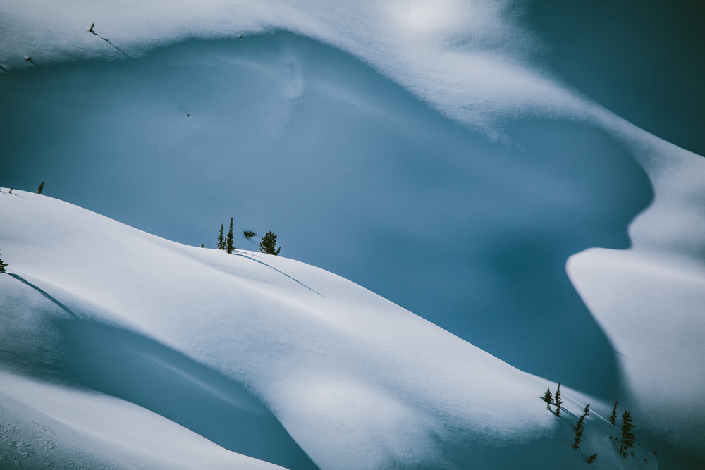 winter-9392.jpg