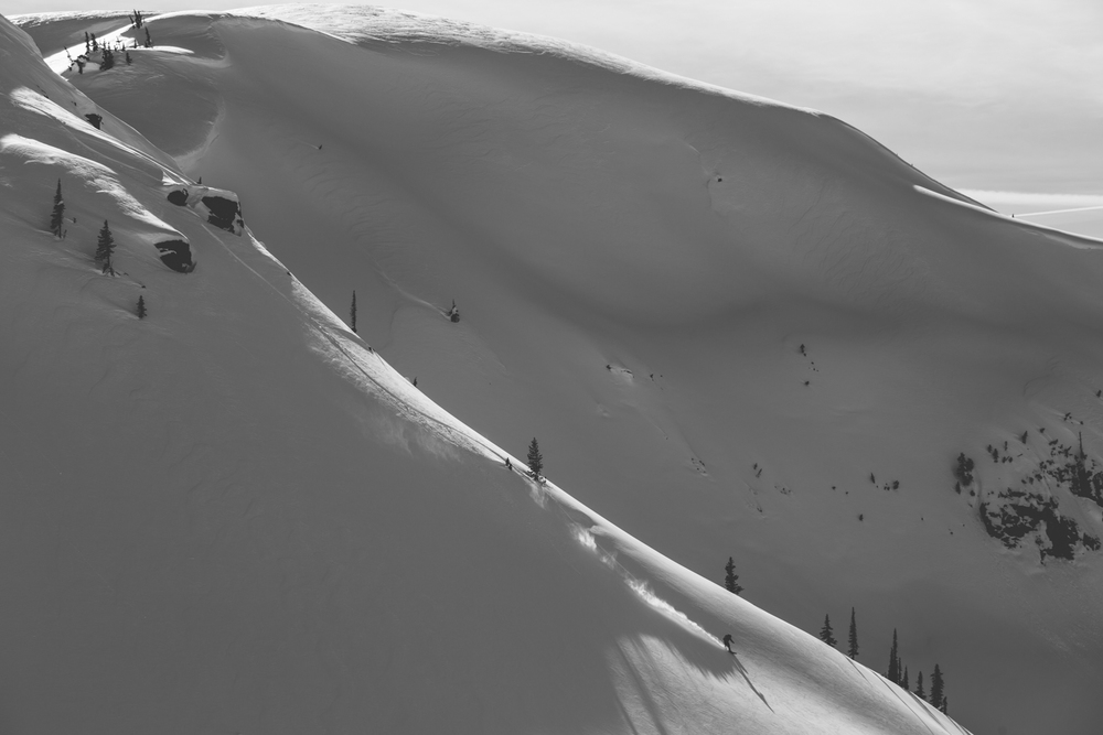 winter-9423.jpg