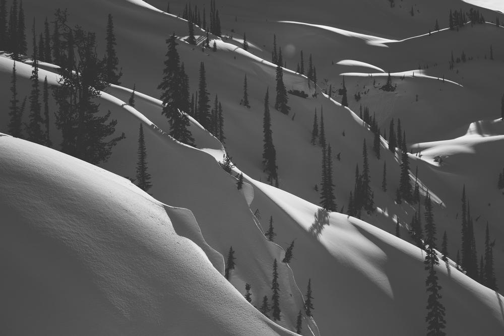 winter-9450.jpg