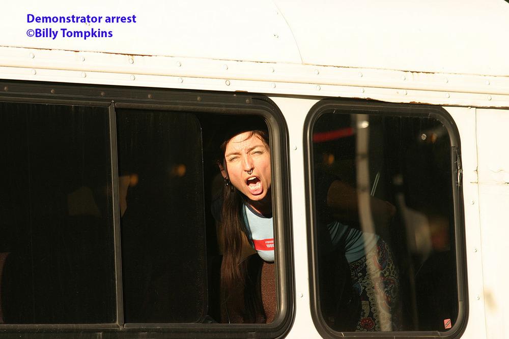 Demonstrator arrested