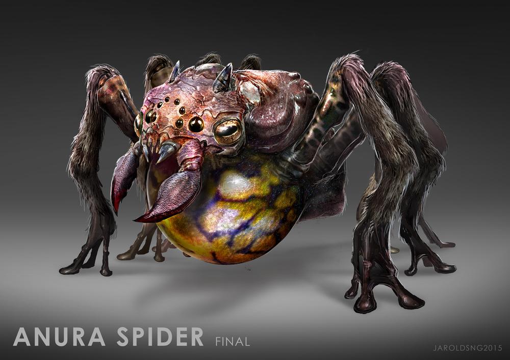 Anura Spider