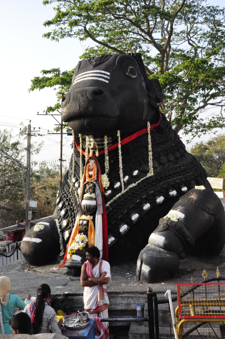 On the way back down the hill we stop to admire the large Nandi..