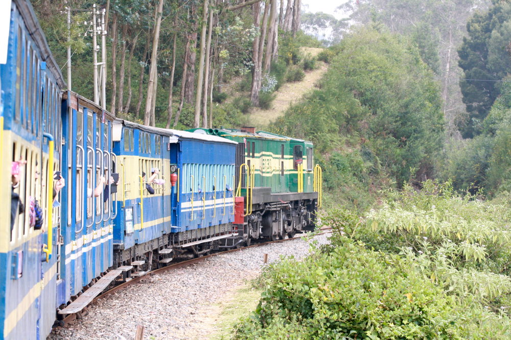 Nilgiri Mountain Railway_2_Indian Train Journals.jpg