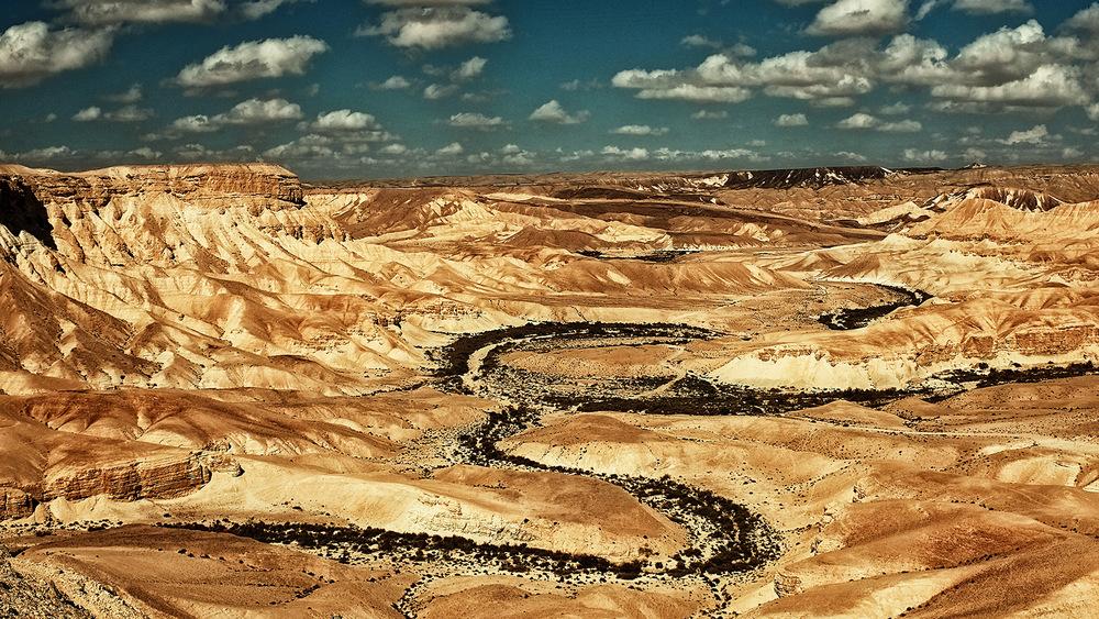 Israël, Sde Boker. 2015
