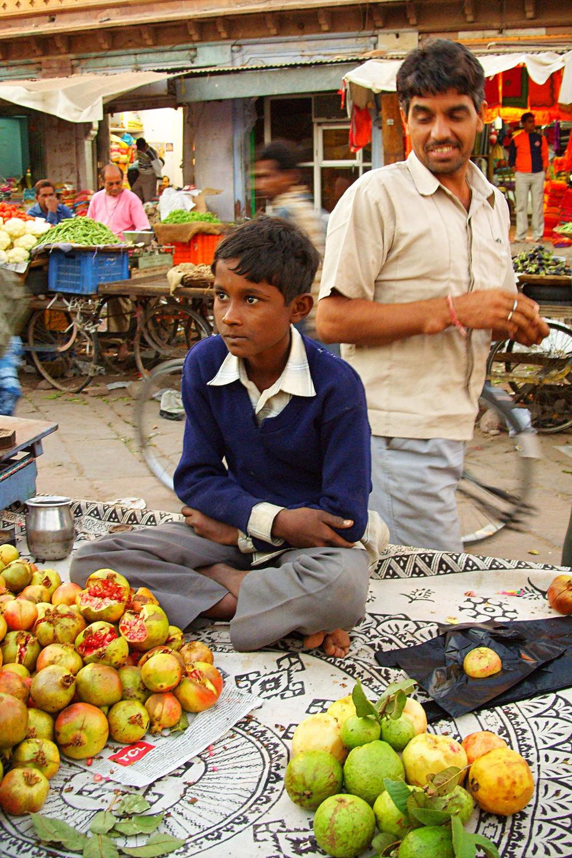 Inde, Jodhpur. 2006