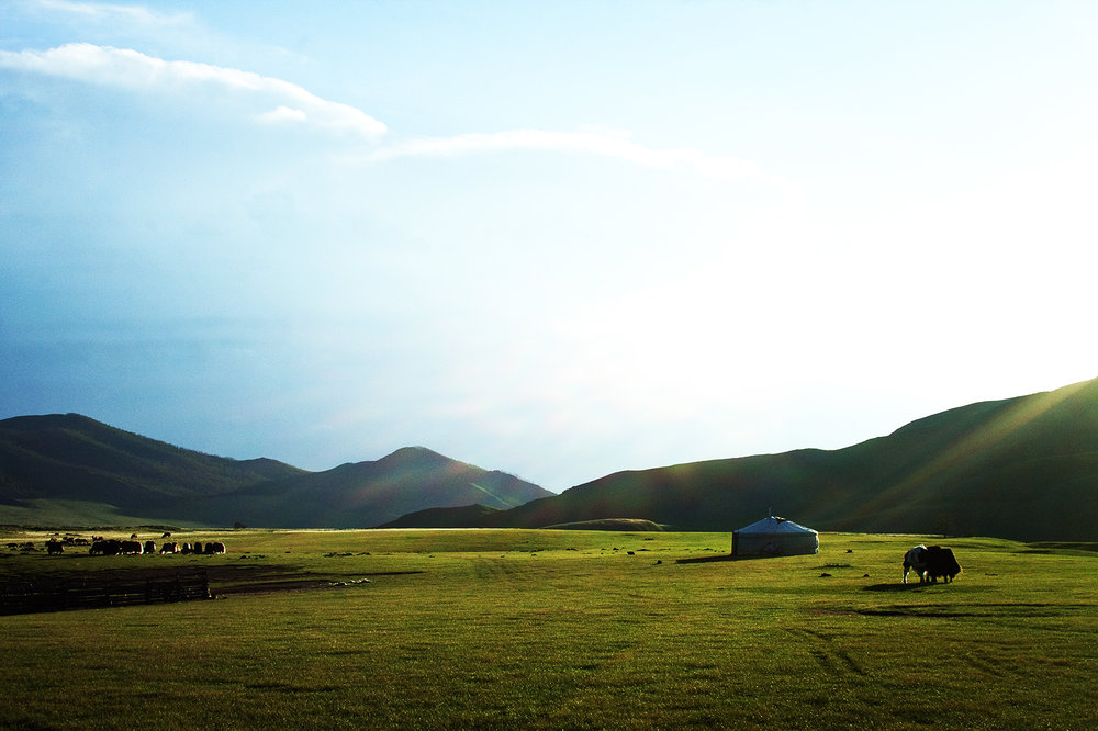 Mongolie. 2011