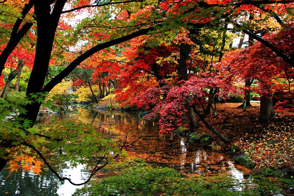 Japon, Morioka. 2008