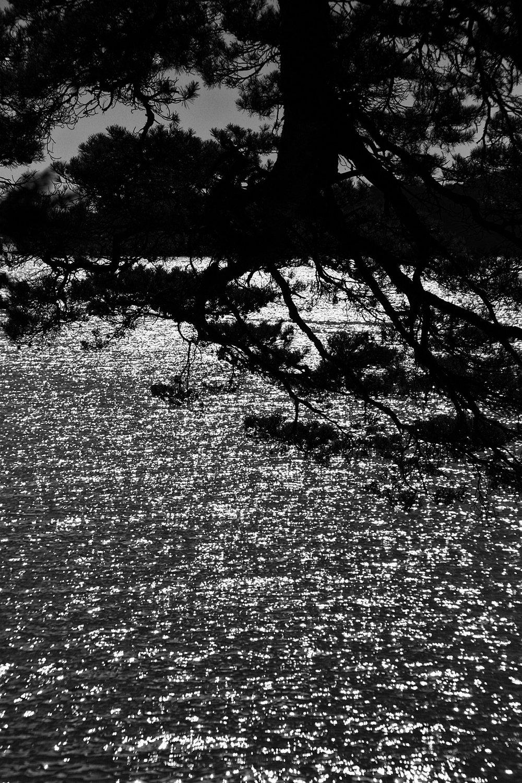 Japon, Matsushima. 2008