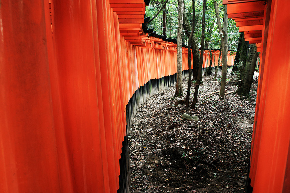 Japon, Kyoto. 2008