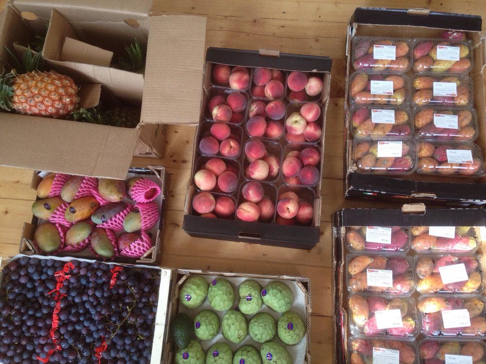 fruit_haul.jpg