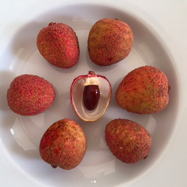lychee_fruit_1.png