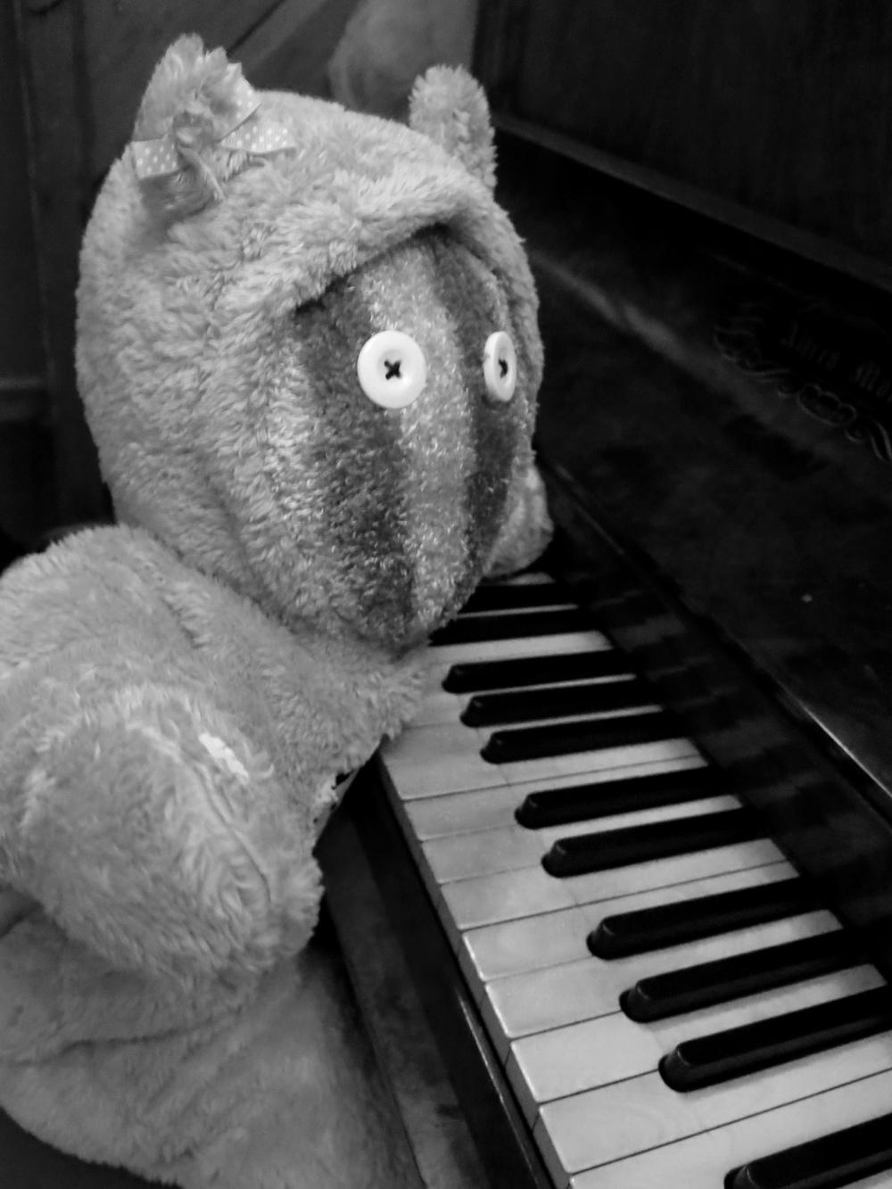 B & W piano bear.jpg