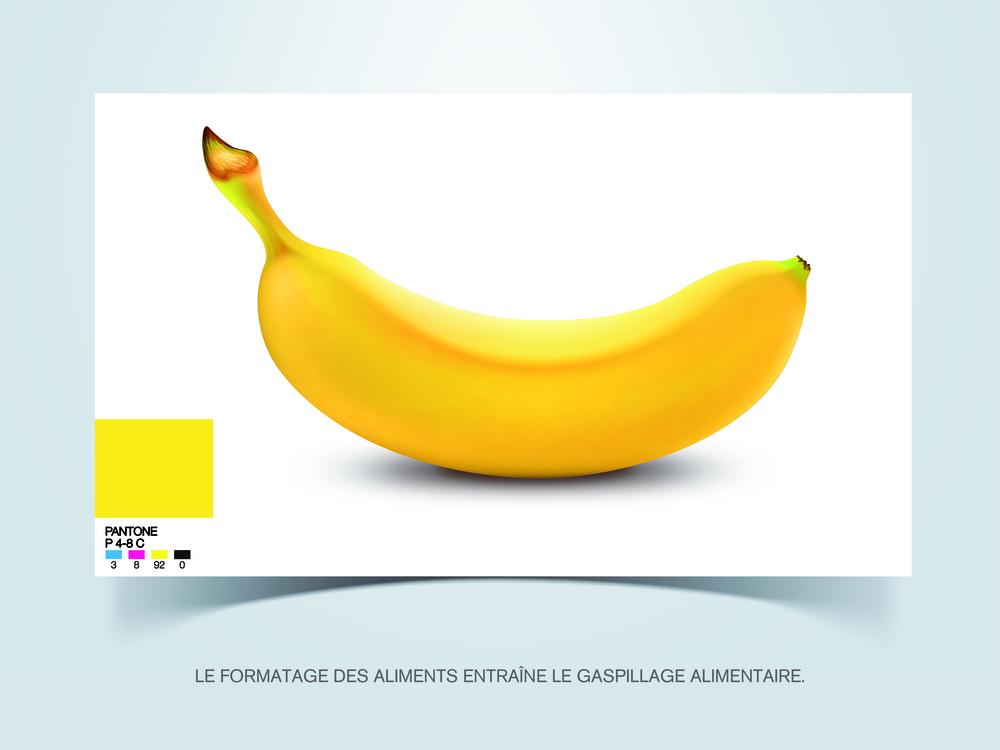 Premier Prix – «Formatage »: Thomas Martinet, Richard Campain (Intuit Lab - 4eannée)