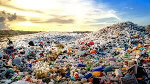 sea of plastic.jpeg