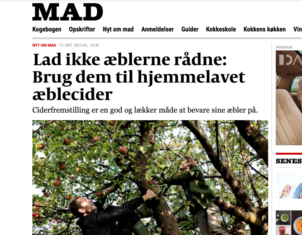 Politiken 17/10 2013