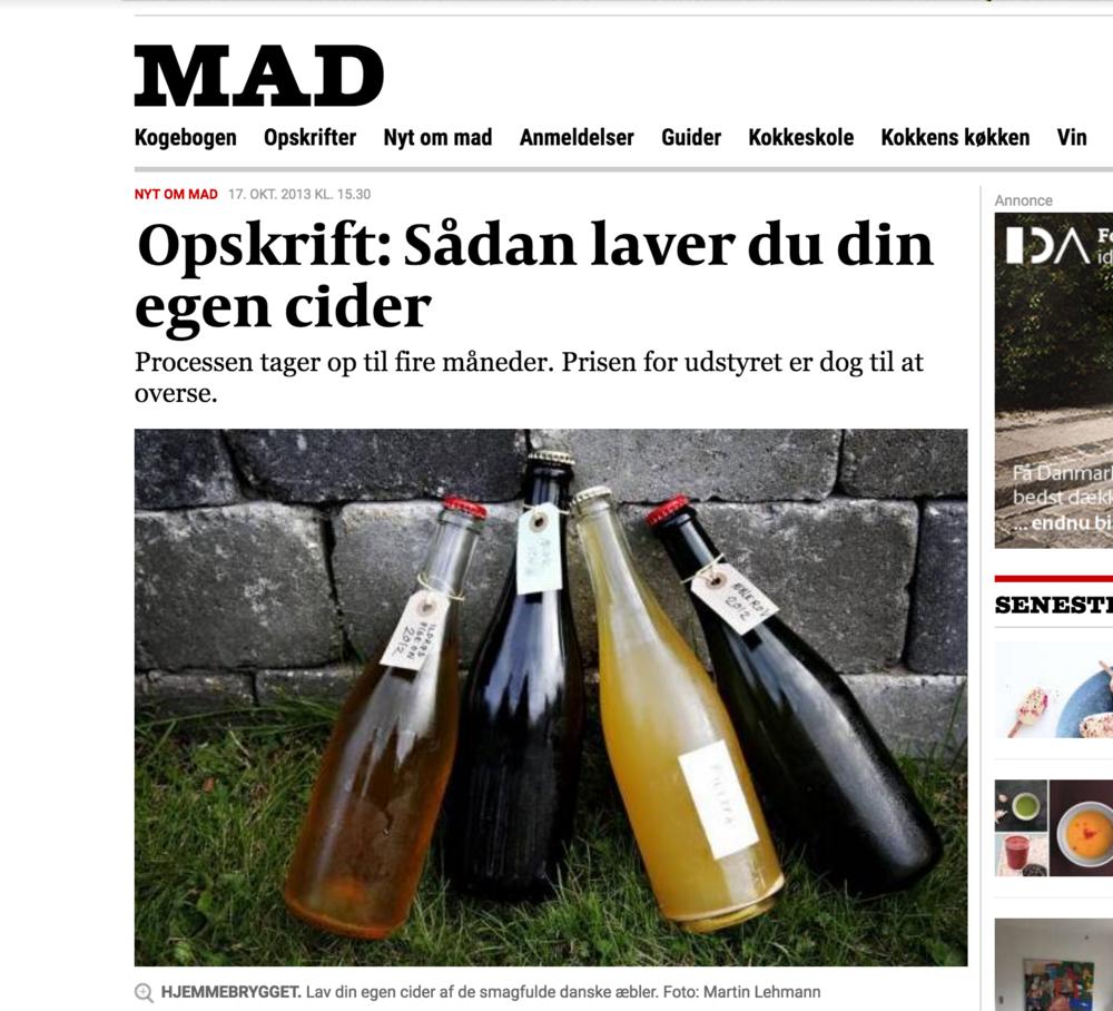 Guide i Politiken 17/10 2013