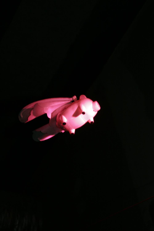 Un cochon volant à Soukmachines