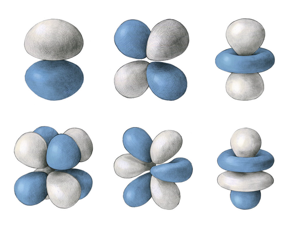 Top row from left to right: 2p, 3d, and 3d orbitals.  Bottom row: all three are 4f orbitals.
