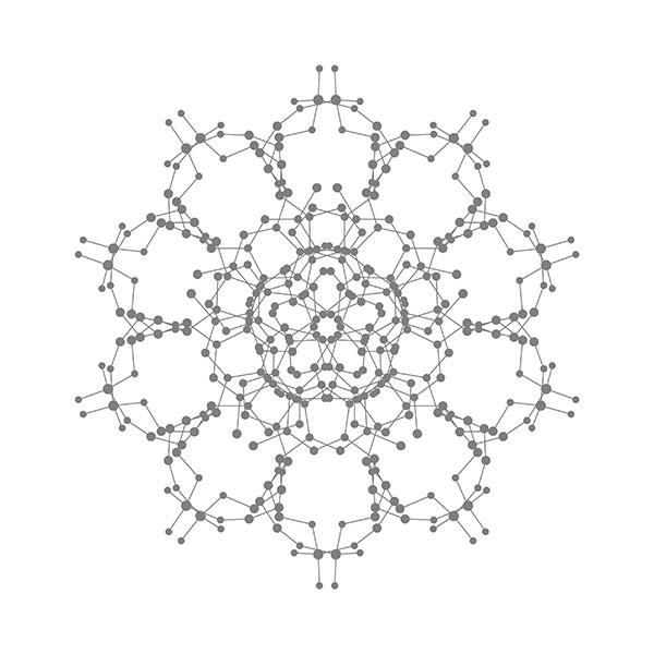 生物大分子