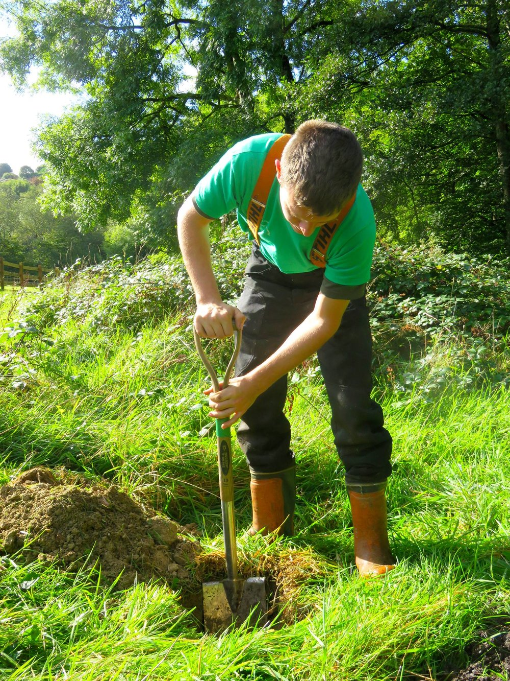 Land management Services by Chris Bond, Devon/Cornwall/Southwest England UK.  www.stonewalling-hedgelaying.co.uk