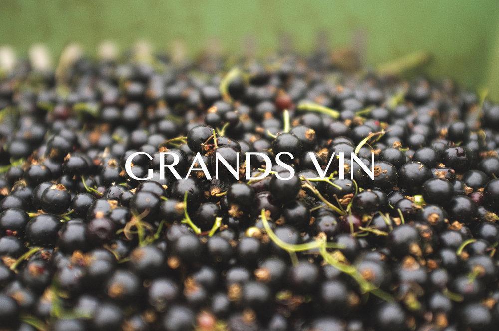 GRANDS VIN.jpg