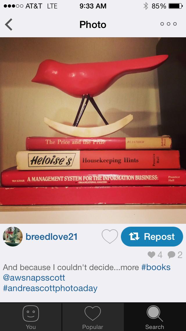 Andrea Scott Instagram Photo-a-day