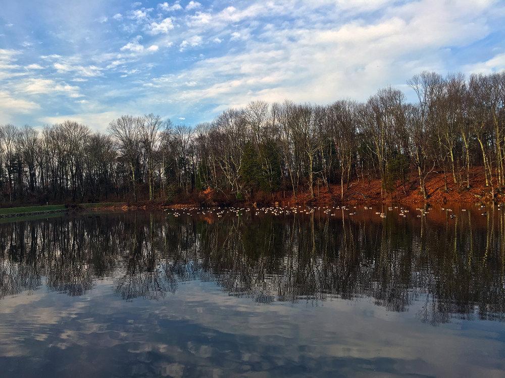 Linda Park Mountain Lakes Preserve 2016 Contest.jpg