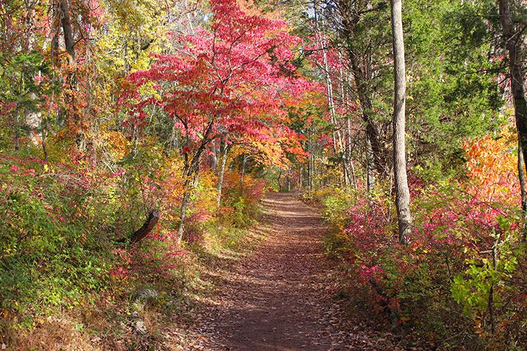 Fall Peak at Mountain Lakes Nature Preserve