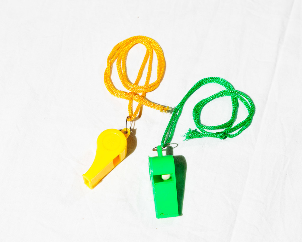 1 whistle for emergency and fun