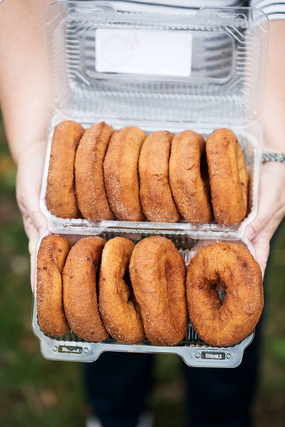 apple cider donuts alstedes farm chester, nj