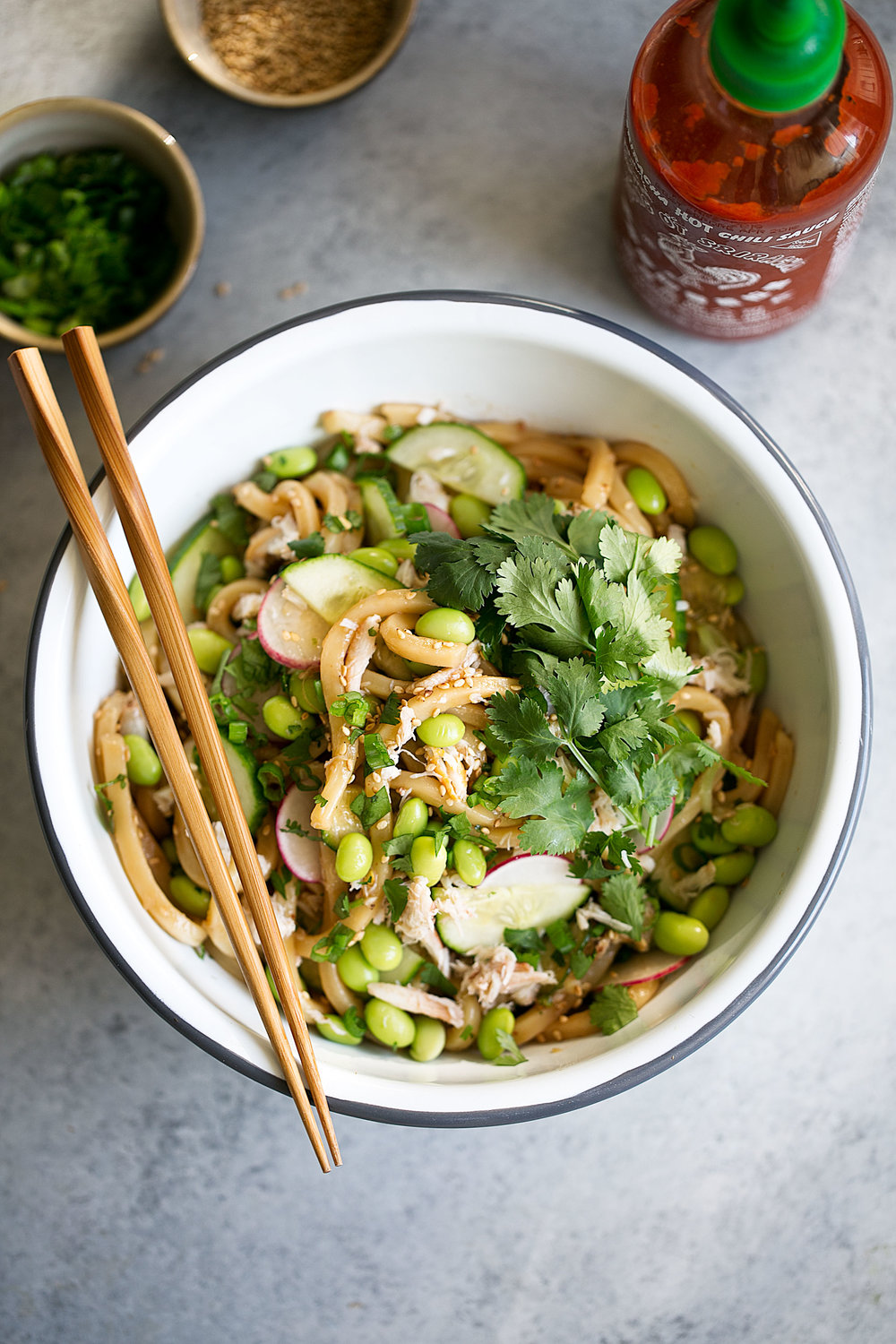 cold sesame asian udon noodles with crab