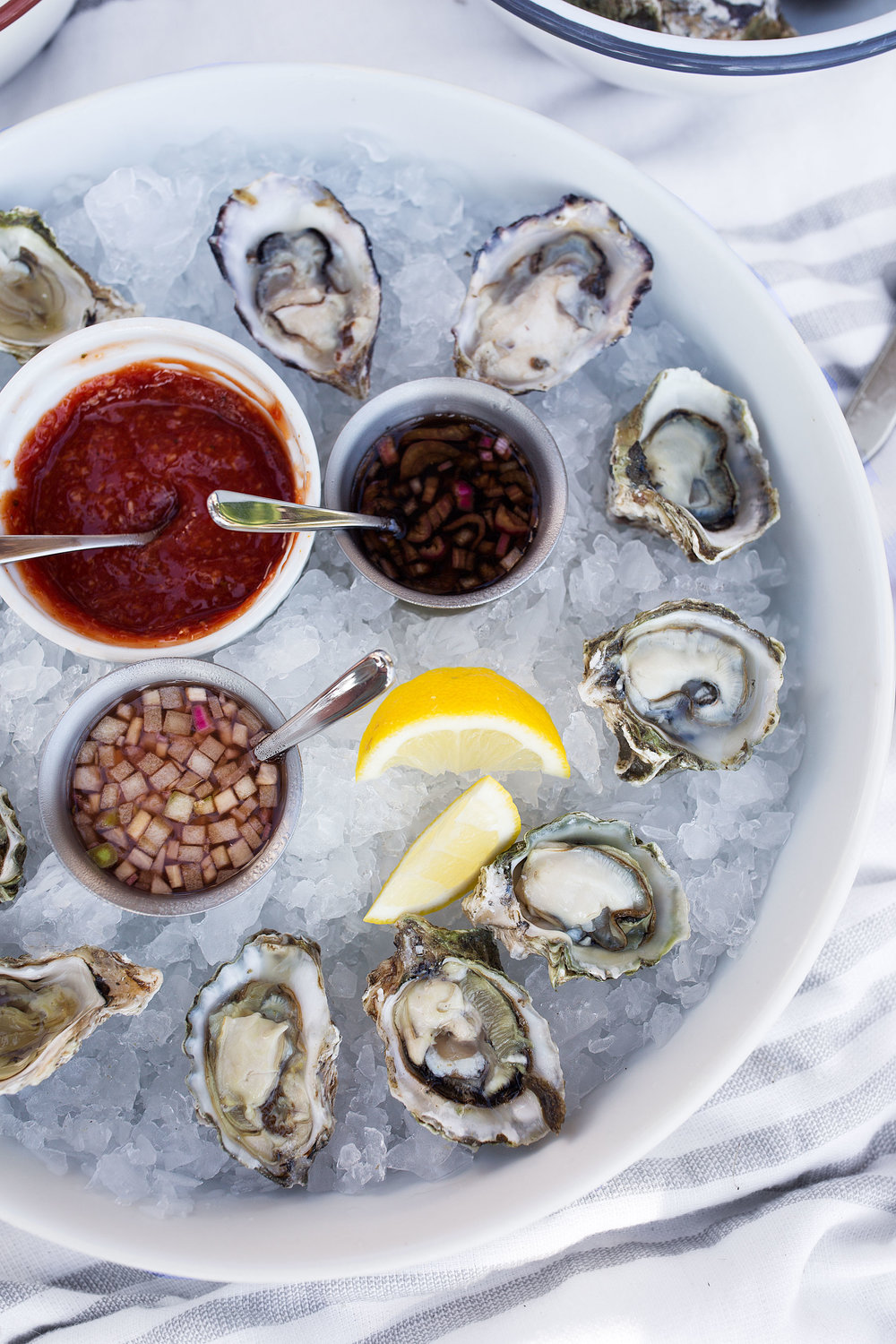 shuck yeah: all about oysters closeup on a dozen