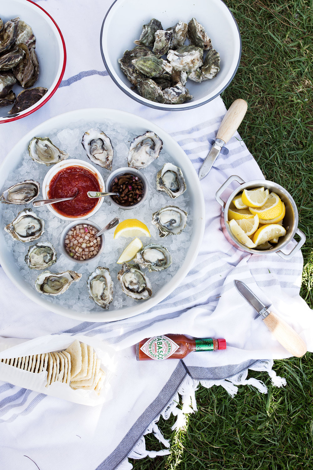 shuck yeah: all about oysters, shellfish picnic in the park