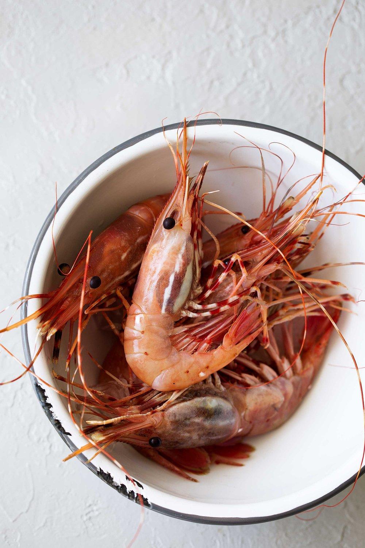 santa-barbara-spot-prawns.jpg